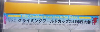 climbWcup2014.JPG