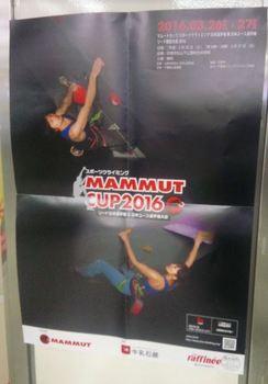 mammut_CUP.JPG