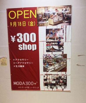 open_moda300+.JPG